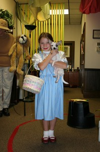 How-to-Make-a-Dorothy-Costume