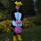 Child's Penguin Costumes
