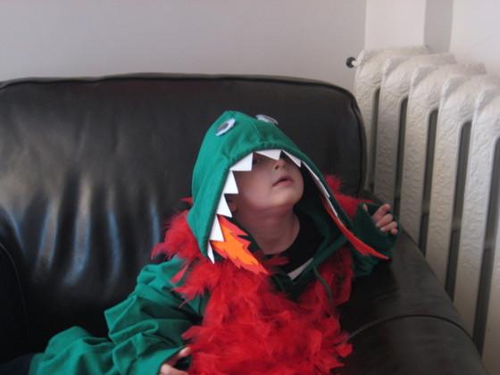 Dragon-Hoodie-Costume