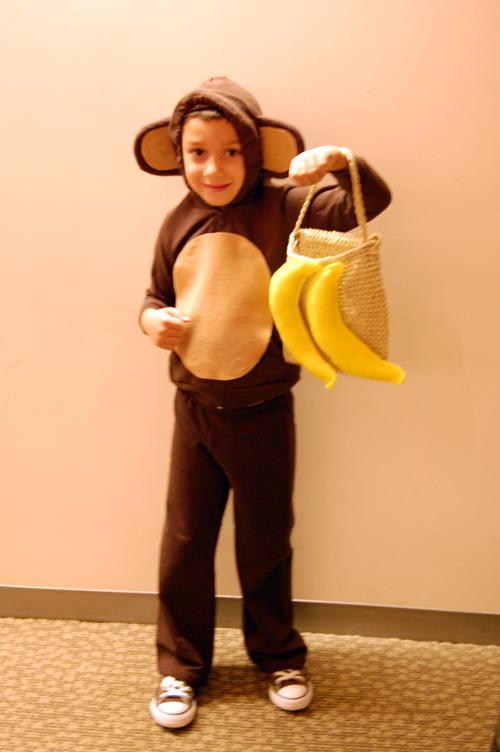 Monkey-Costume