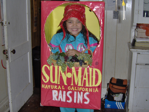 Sun-Maid-Raisins-Box-Costume