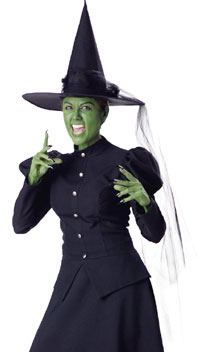 Wicked Witch Costume Elite