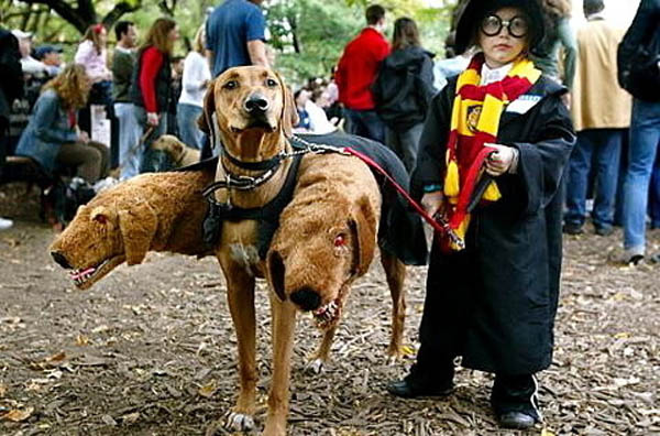 Harry-Potter-Three-Headed-Dog-Costume