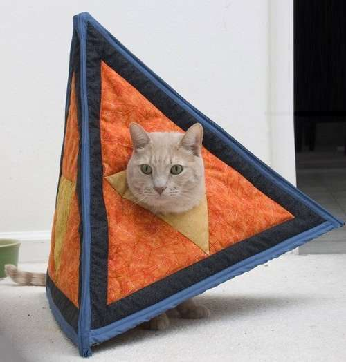 Catahedron Cat Costume