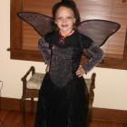 Goth Fairy Costumes
