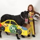 NASCAR Costumes