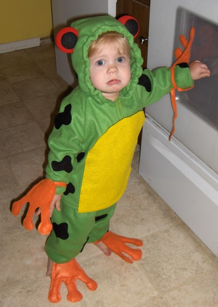Red eyed tree frog costumes costume pop solutioingenieria Images