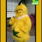 Dr Seuss Sneetch Costumes