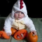 Halloween Chicken Costumes