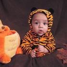 Tiger Costumes