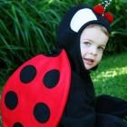 LadyBug Kids Costumes