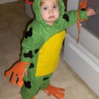 Red-Eyed Tree Frog Costumes