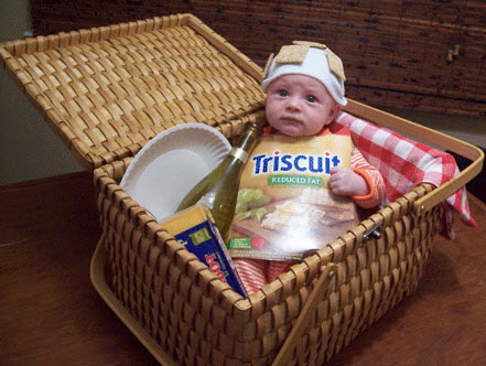 Baby Picnic Basket Costume