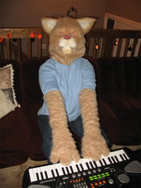 keyboard cat costume