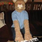 Keyboard Cat Costumes