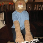 Keyboard Cat Costumes