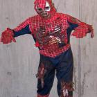 Zombie Spiderman Costumes