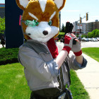 Star Fox Costumes