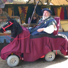 Jousting Knight Wheelchair Costumes