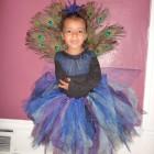 Precious Peacock Costumes