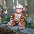 Mischevious Monkey Costumes