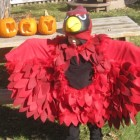 Red Bird/Cardinal Costumes
