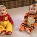 Winnie the Pooh & Tigger Costumes