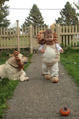 Lion Pack Costumes