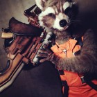 Rocket Raccoon Cosplay - CostumePop