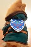 Hachi Corp Costumes - Legend of Zelda Back - CostumePop